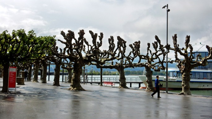 rapperswil lake front